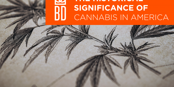 The-Historical-Significance-of-Cannabis-in-America